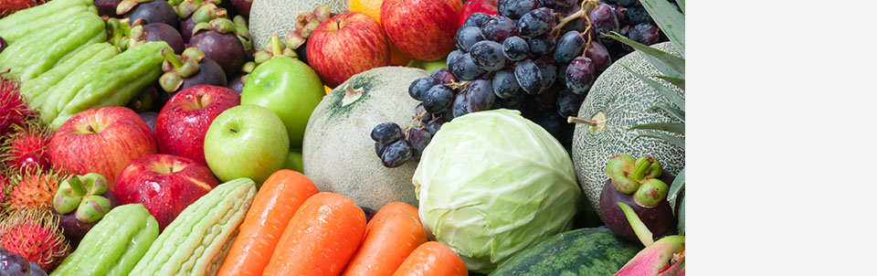 Stony Brook University Cancer Center Dietitian shares ways to reduce risk factors through proper nutrition and diet