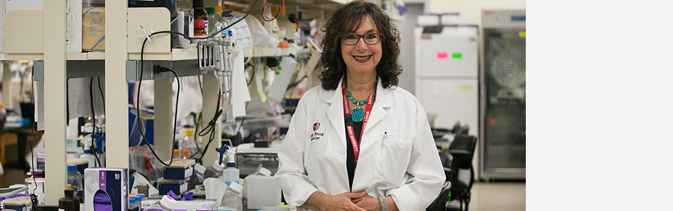 Long-term NIH-funded researcher investigates biology of cancer
