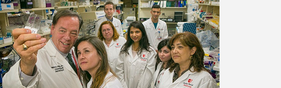 Led by Stony Brook Pathology researchers, the finding detailed in Cancer Research sheds light on dangerous role of keratin in cancer process